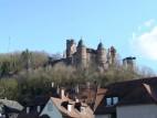 Die Burg vom Main aus gesehen